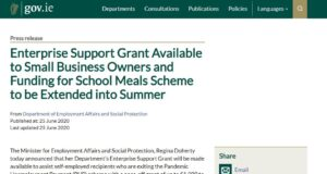 Image of Small business support grant from Gov.ie website